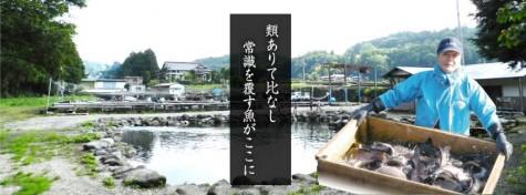 kunugi2